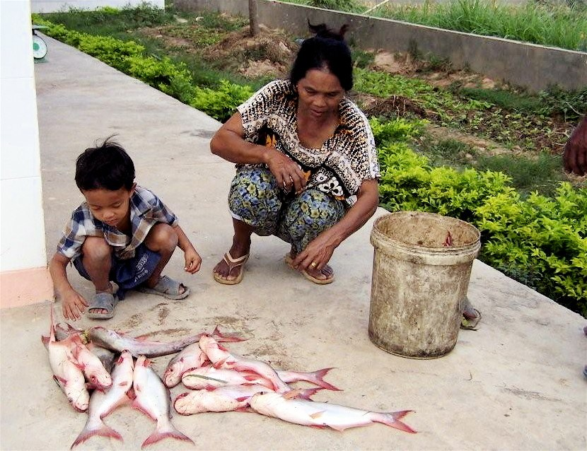 Woman and son in Cambodia prepare fish to sell